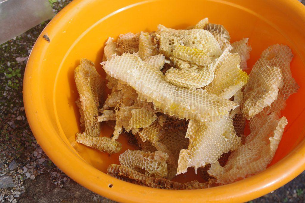 日本ミツバチのハチミツ